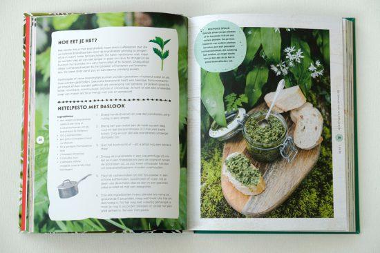 Gids De Smaak van Wildplukken: zelf brandnetel-pesto maken . wildplukken, boeken, tips, eetbare planten en bloemen zoeken