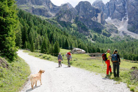 Een rondje in Val Venegia kost ongeveer vierenhalf uur, duurzaam reizen, rondreis Trentino, Italie, duurzame, groen, groene