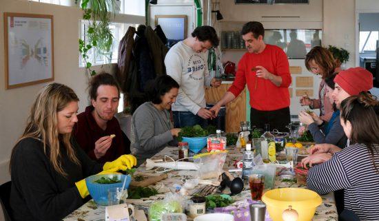 Deelnemers aan de wildplukexpeditie in Amsterdam-Noord. Wildplukexpeditie in Amsterdam-Noord, wildplukken, eetbare wilde planten