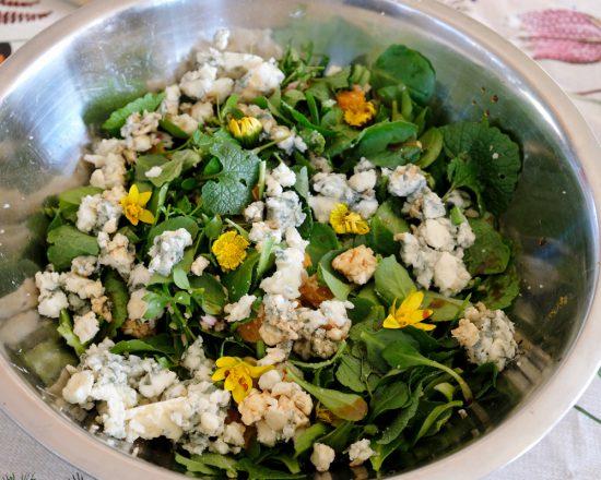 Een salade van eetbare wilde kruiden met blauwe kaas en bloemetjes. Wildplukexpeditie in Amsterdam-Noord, wildplukken, eetbare wilde planten