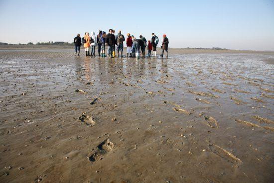 Wandelen door de glibberige modder op de wadden van Borkum. Rondreis Duitse Wadden, waddeneilanden, Duitsland, waddenzee, Borkum,