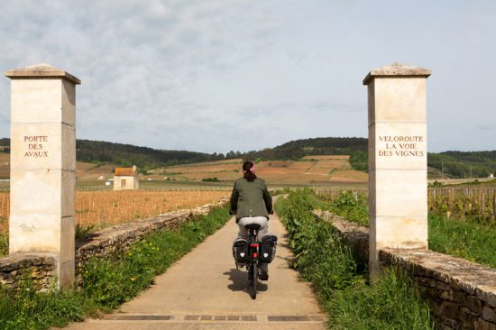 Fietsen langs de La Voie des Vignes in de Bourgogne , Fietsen in de Bourgonge, Frankrijk