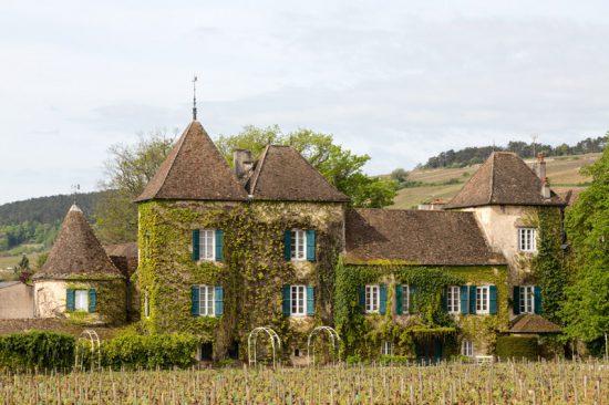 Mooie pandjes langs de fietsroute in de Bourgogne, Fietsen in de Bourgogne, Frankrijk