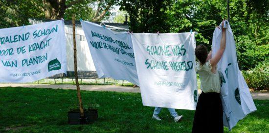 Een schone was en een schoon milieu dankzij Seventh Generation