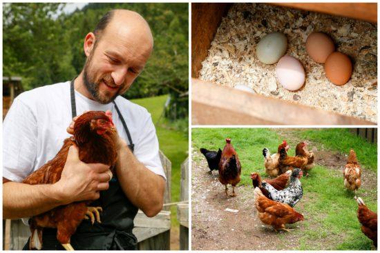Restaurants in Trentino, Italie. Massimo geeft me een rondleiding over de boerderij Agritur Dalaip dei Pape