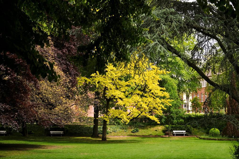 Het Stadtpark in Nordhorn was ooit de privétuin van een rijke textielbaron. Fietsen door het Vechtdal van Duitsland naar Nederland, fietsvakantie