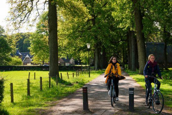 Fietsen onder de bomen bij Vilsteren. Fietsen door het Vechtdal van Duitsland naar Nederland, fietsvakantie