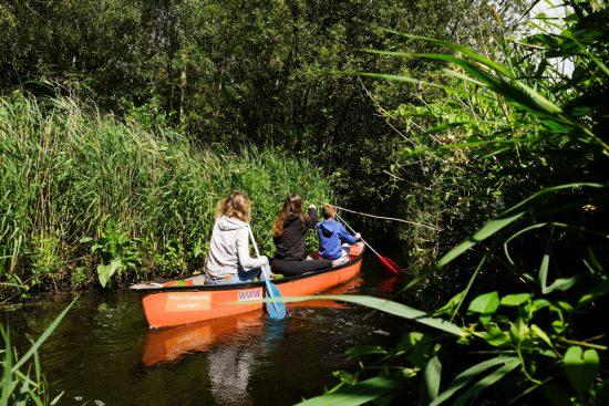 Kanoën door een doolhof van slootjes omzoomd door riet. Wetlands Safari, kano tour in Ilperveld, de groene achtertuin van Amsterdam, n
