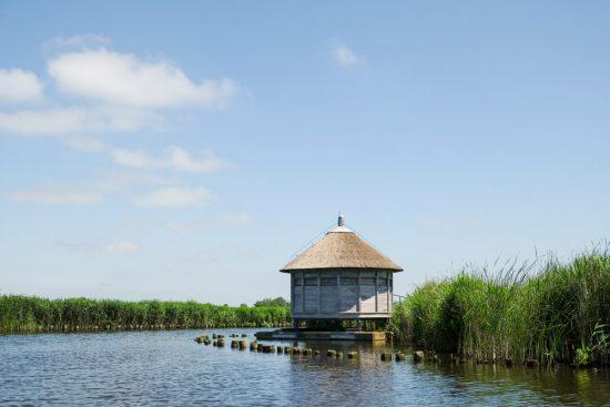 Je komt zelden iemand tegen in natuurgebied Ilperveld. Wetlands Safari, kano tour in Ilperveld, de groene achtertuin van Amsterdam, n