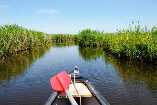 Wat een rust, op tien minuten bussen vanaf Amsterdam. Wetlands Safari, kano tour in Ilperveld, de groene achtertuin van Amsterdam, n