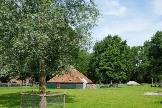 Een van de kinderboerderijen van Zaandam vind je in het Darwinpark