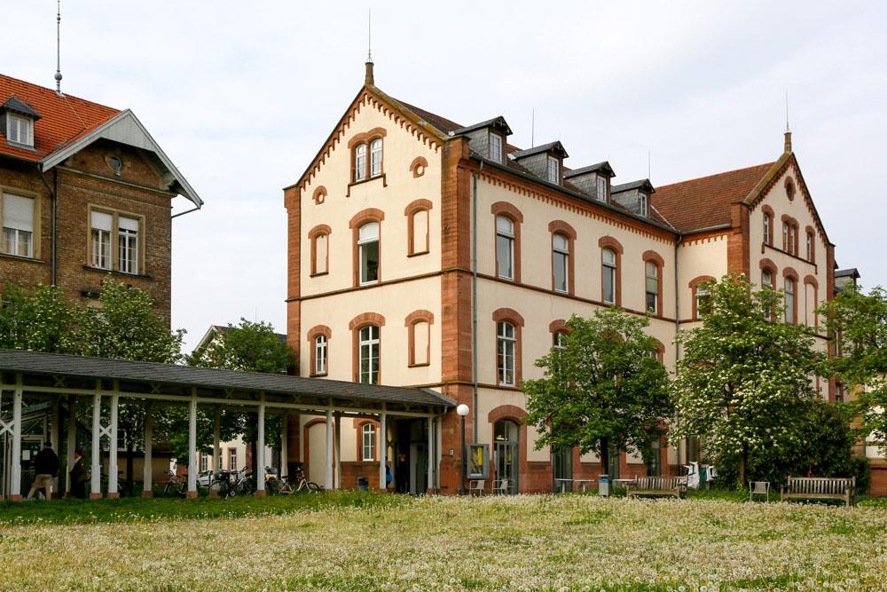 Cultuur snuiven bij museum Sammlung Prinzhorn in Heidelberg . Fietsen over de Bergstrasse bij Heidelberg, Duitsland