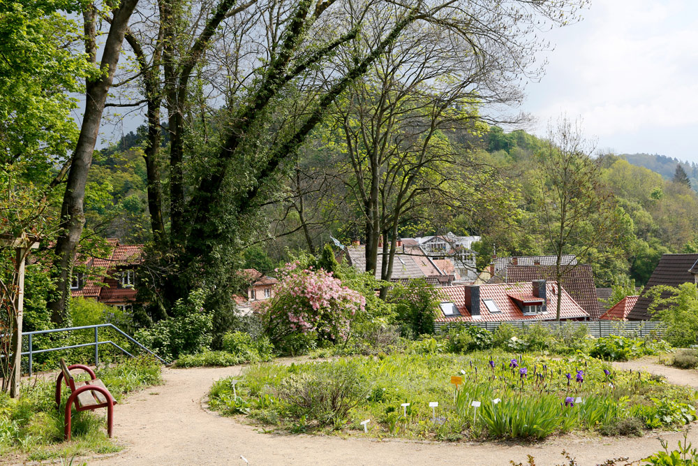 Rondom Weinheim is het vooral heerlijk groen. Fietsvakantie Die Bergstrass, Heidelberg, Duitsland, fiets, fietsroute, rondreis, standplaats