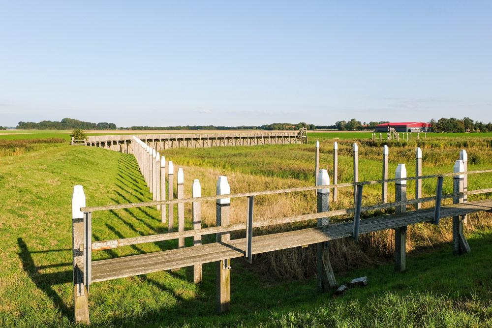 Wandelen langs de contouren van het voormalige eiland Schokland.. Wandelen in Flevoland