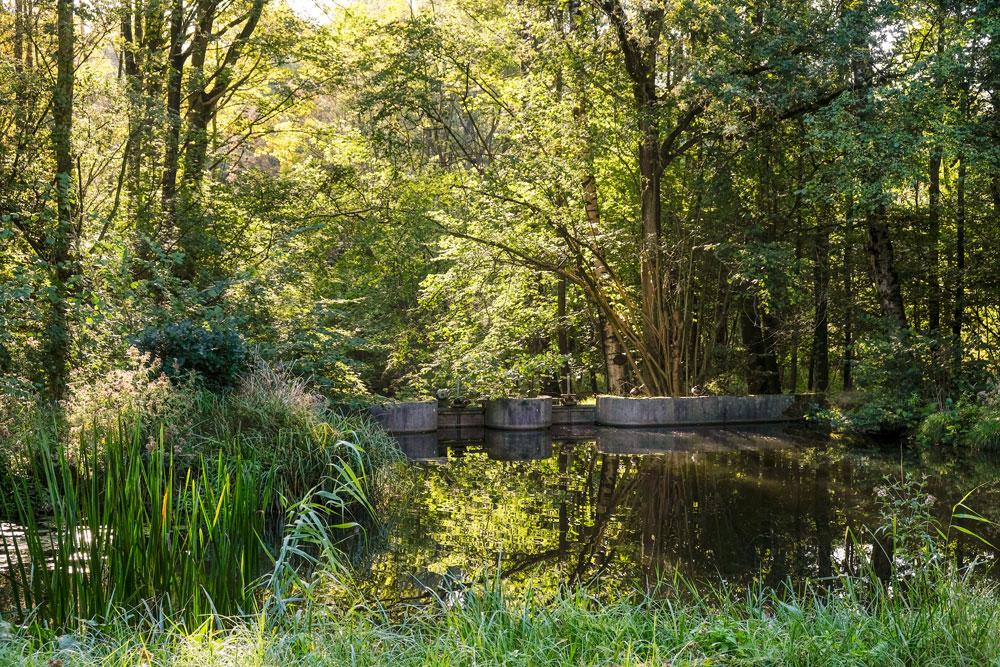 Het Waterloopbos was jarenlang een openluchtlaboratorium. Wandelen in Flevoland