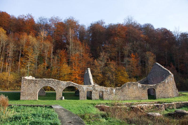 Herfstkleuren en ruïnes in Monautban. Rondreis La Gaume, Wallonie, Belgie, hotspots, bezienswaardigheden, roadtrip