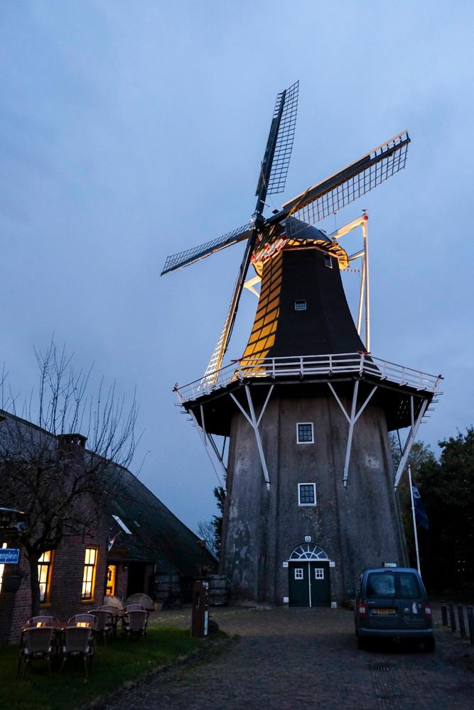 Abraham's Mosterdmakerij in Eenrum, waar ook biologische mosterd gemaakt wordt. rondreis Waddenkust, Groningen, roadtrip