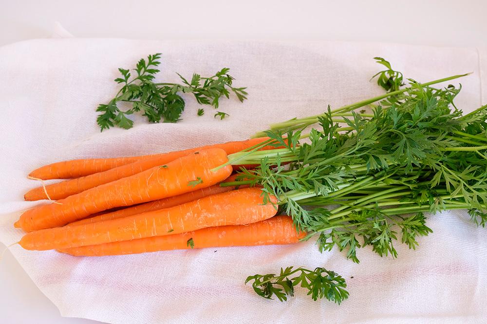 bos wortelen met loof, bospeen