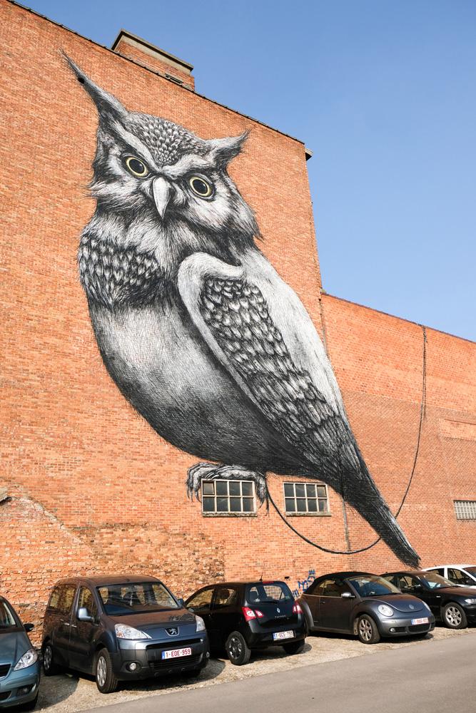 Een werk van graffiti artiest ROA. Stedentrip Hasselt, Belgie, hotspots, wandelingen, winkels, winkelen, tips, wandelen