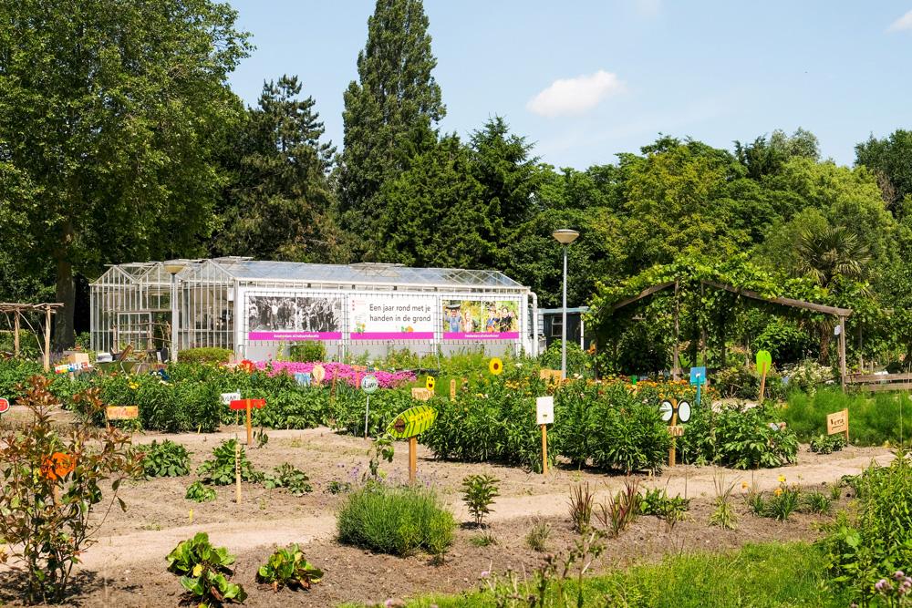 Schooltuin Vink bestaat al bijna 100 jaar lang. Park Frankendael in Amsterdam Watergraafsmeer. Groen in de stad.